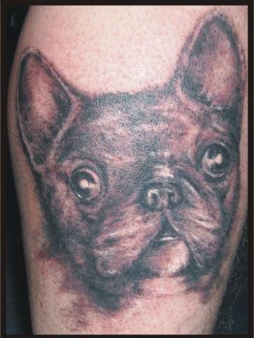 mordka psa - tatuaż studia tatuażu