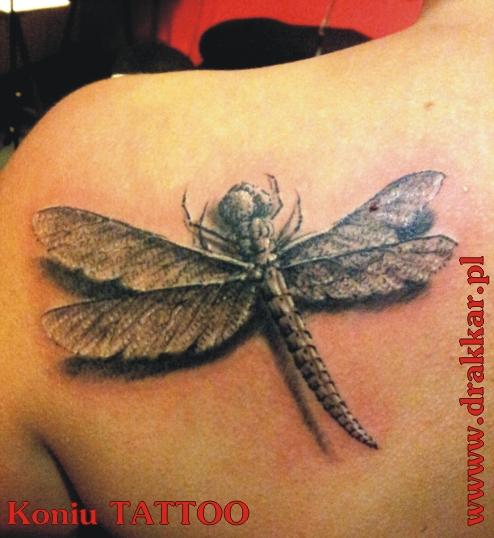 motyw ważki, tatuaż studia Drakkar, Śląsk