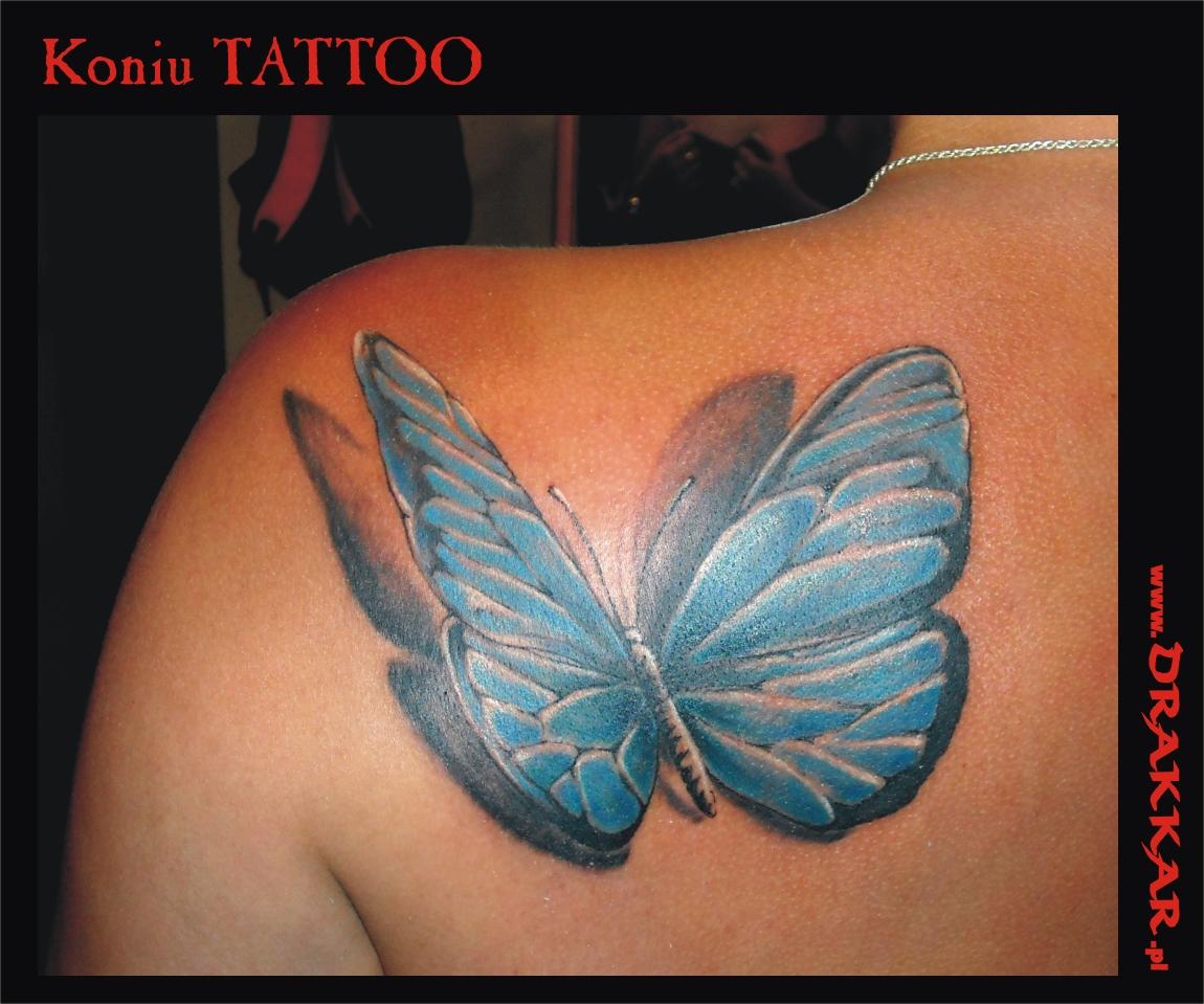 motyl - tatuaż, Katowice